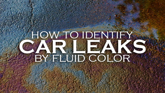 car-fluid-leaks